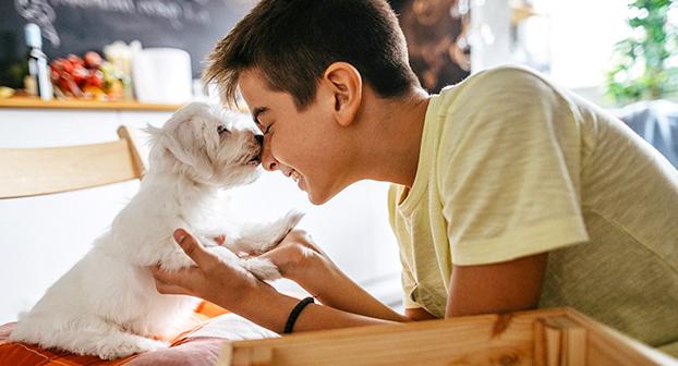 perchè naso umido cane