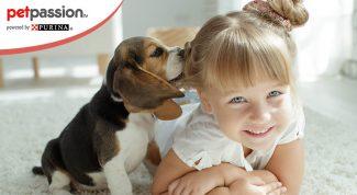 Razze di cani più adatte ai bambini