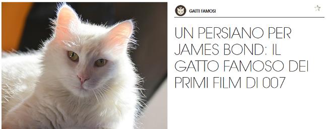 gatto-persiano-famoso-james-bond-gourmet
