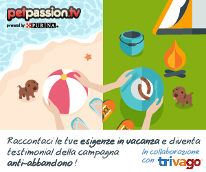 77_in-vacanza-con-pet-img_banner