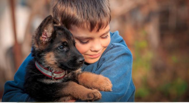 Bambino e cane storia