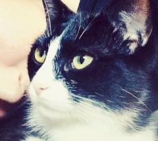 donna-gatto-legame-speciale