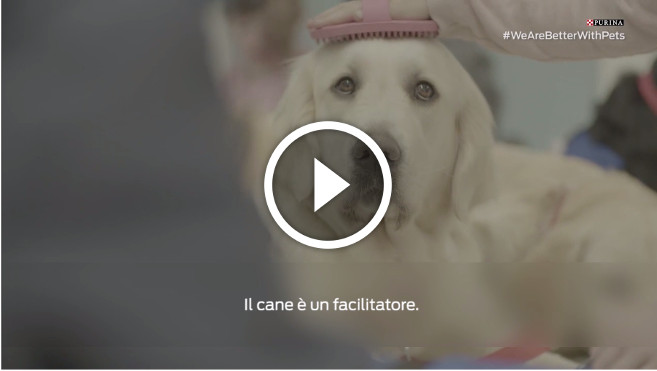 video-pet-therapy-barcellona