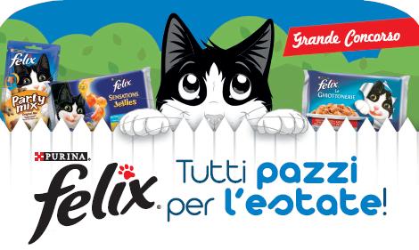 Felix-concorso-gatti
