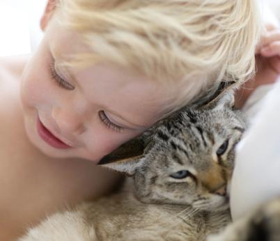 Gatti E Neonati Insieme Si Può Video