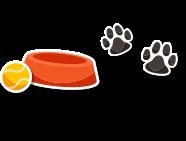 premi-cane-gatto