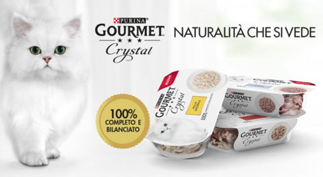 Omaggio Gourmet Crystal Rispondi Alle Domade