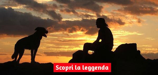 Leggenda Del Ponte Dellarcobaleno Paradiso Dei Cani