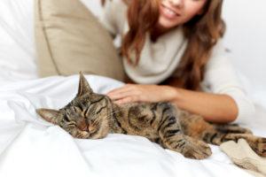 gatto influenza sintomi