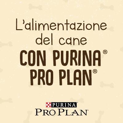 L'alimentazione del cane con Purina® Pro Plan®