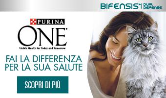 Purina One Bifensis