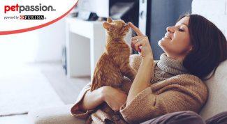 Gatti riconoscono la voce degli uomini