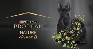 focus group purina pro plan