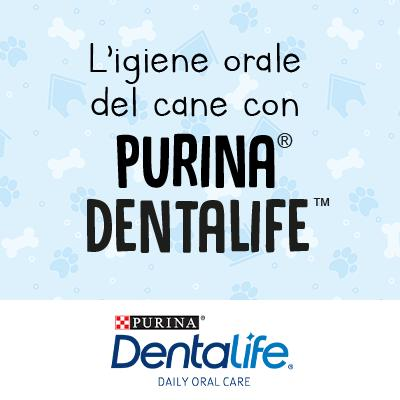 L'igiene orale del cane secondo Purina® Dentalife™