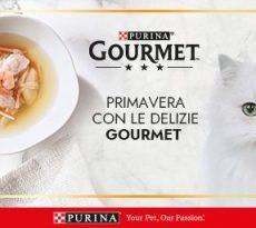 concorso gourmet gatto petpassion