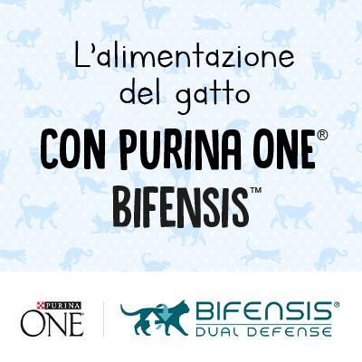 L'alimentazione del gatto secondo Purina ONE® Bifensis®