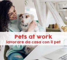 pets at work sondaggio petpassion