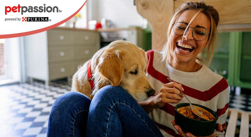 Cosa Non Possono Mangiare I Cani La Lista Petpassion