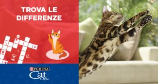 Gioca con Purina Cat Chow